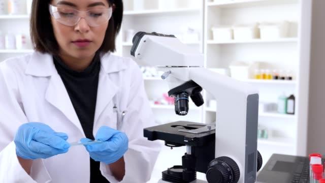 vídeos de stock, filmes e b-roll de os cientistas fêmeas sérios trabalham junto em um laboratório - concentração