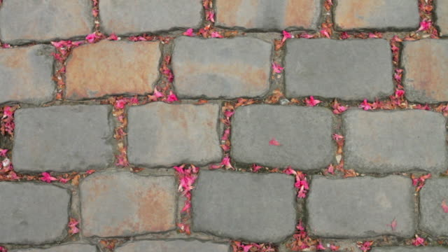 sett cobblestone, or belgian block, in paris, france - cobblestone stock videos and b-roll footage