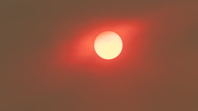 setting sun obscurred by forest fire smoke, sydney, australien - smog stock-videos und b-roll-filmmaterial