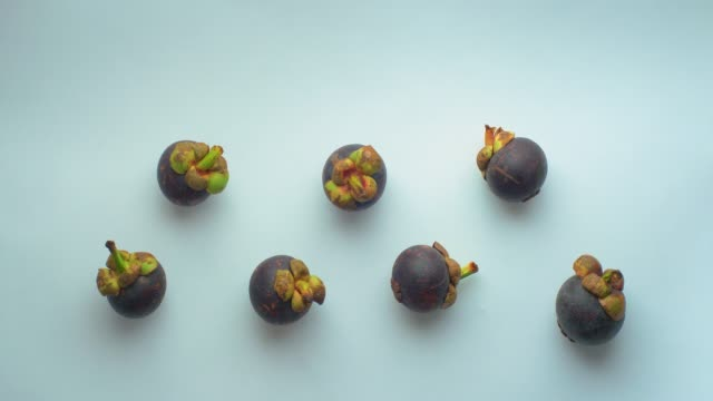 seven mangosteen (garcinia mangostana) fruits and two white man's hands left them on a white background - depth marker stock videos & royalty-free footage