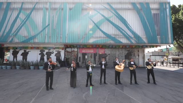 seven member mariachi band of musicians with some wearing protective masks play their instruments as the band maricahi cultural perform during a... - cactus stock videos & royalty-free footage