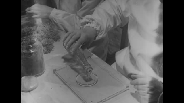 vidéos et rushes de several dead starfish, scorpions, and beetles / a man's hand pours a thick viscous material on a rectangular plate / hand removes a jar from a... - pince chirurgicale