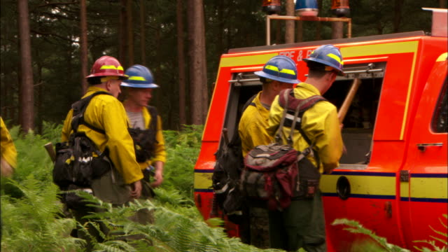 several firefighters remove axes and shovels from a firetruck parked in the forest. - forestry industry stock videos & royalty-free footage