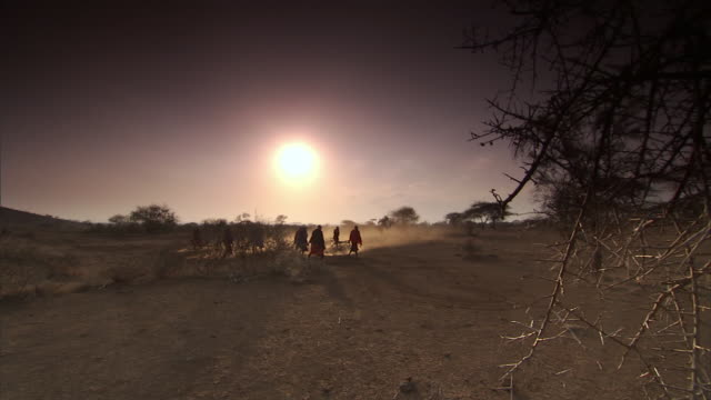WS Several native men in ethnic garb walking and dragging large branches / Tanzania