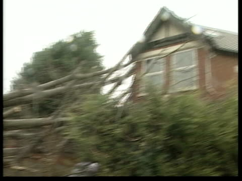 severe weather across the uk; hampshire: southampton: raining lms rescue workers beside downed tree to block of flats it had crashed onto bv rescue... - hampshire bildbanksvideor och videomaterial från bakom kulisserna