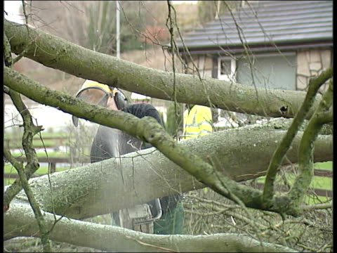severe weather conditions across uk northern ireland county armagh armagh ext general view of fallen tree across road man sawing fallen tree branch... - county armagh stock videos and b-roll footage