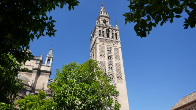 seville giralda tower framed by leaves - circa 12th century stock videos and b-roll footage