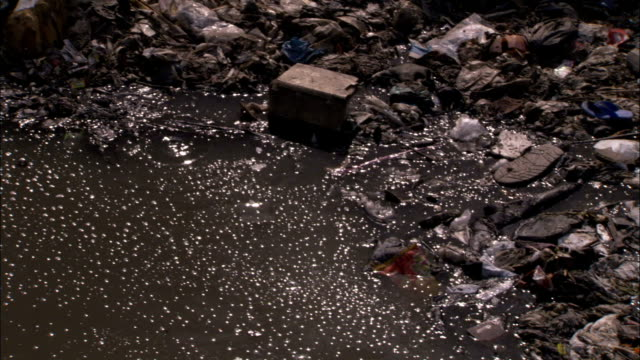 sewage and trash pollute a small river. available in hd. - water pollution stock videos & royalty-free footage