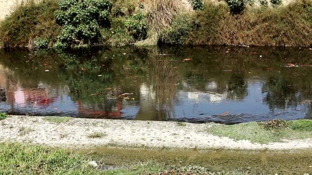 vídeos de stock, filmes e b-roll de fluxo de água poluída resíduos de esgoto - drenagem