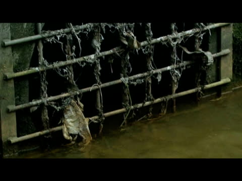 sewage water flows from pipe; 7 september 2009 - dirty stock videos & royalty-free footage