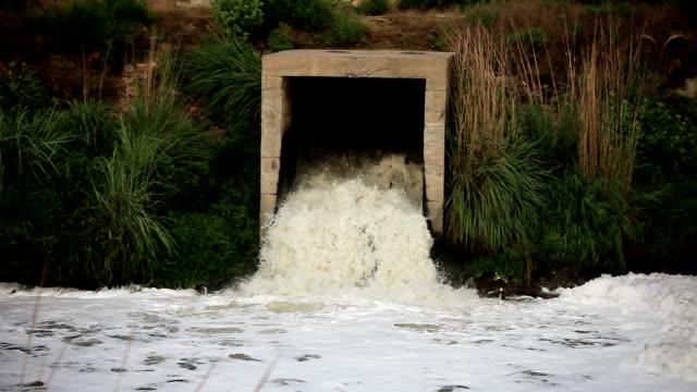 kanalisationsabflüsse - unhygienisch stock-videos und b-roll-filmmaterial