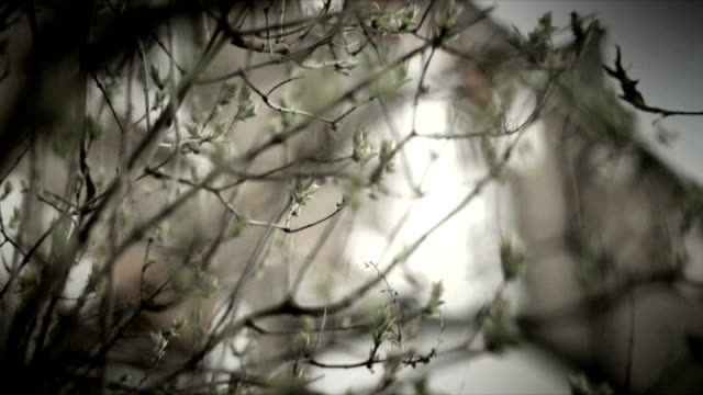 vídeos de stock, filmes e b-roll de sex scandal implicates all five uk music schools; anonymous interview with female musician sot - told the teacher everything emotionally – he was... - estilo de vida insalubre