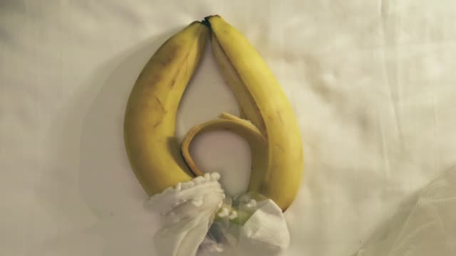 sexual caress of bananas - animazione biomedica video stock e b–roll