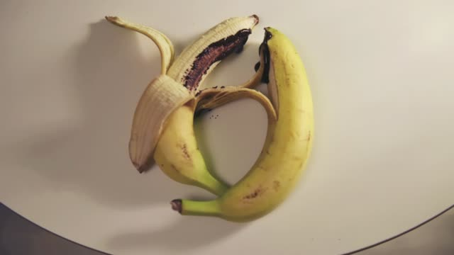 sexual caress of bananas - human sexual behavior stock videos & royalty-free footage