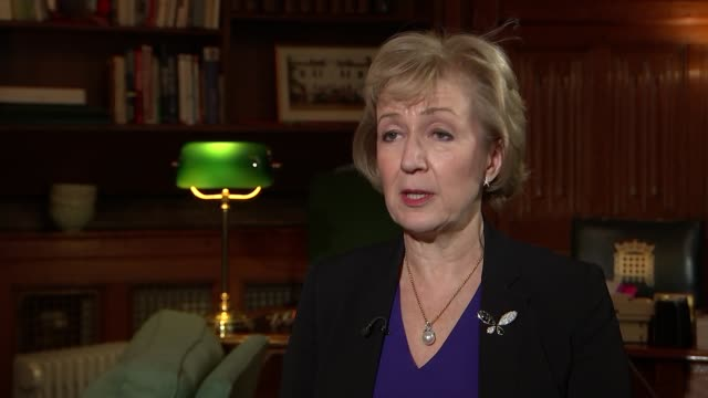 andrea leadsom interview england london int andrea leadsom mp interview sot - andrea leadsom stock-videos und b-roll-filmmaterial