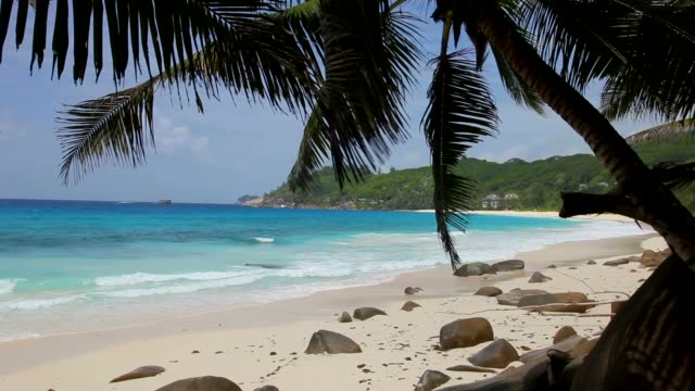 seychelles, mahé island, the beach of anse intendance - seychelles stock videos & royalty-free footage