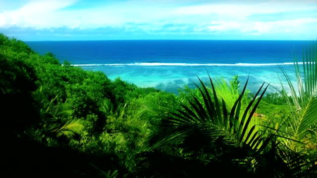 seychelles paesaggio marino - foglia di palma video stock e b–roll