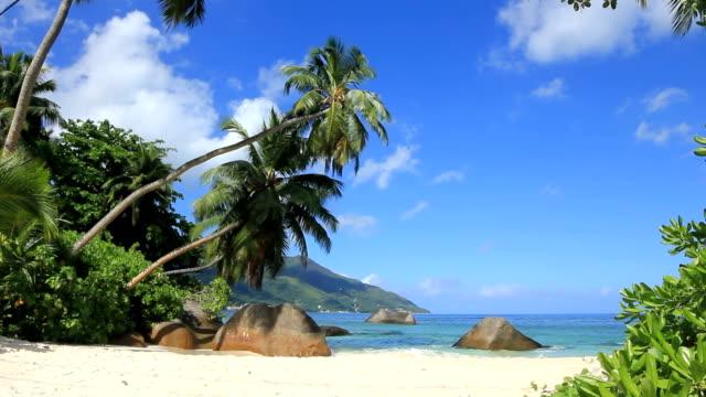seychelles_01 - seychelles stock videos & royalty-free footage