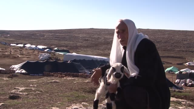 seydi turan a 75yearold nomad who spends the winter in a tent in boztepe neighborhood herds approximately 500 sheep with the help of his wife in... - neckwear stock videos and b-roll footage
