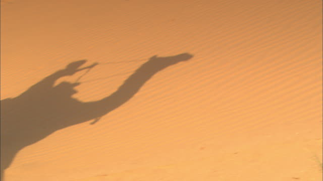 A shadow of a camel and rider passes over sand dunes.