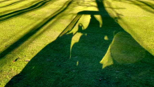 shadow of a man travel with a golf cart on golf course - golf stock-videos und b-roll-filmmaterial