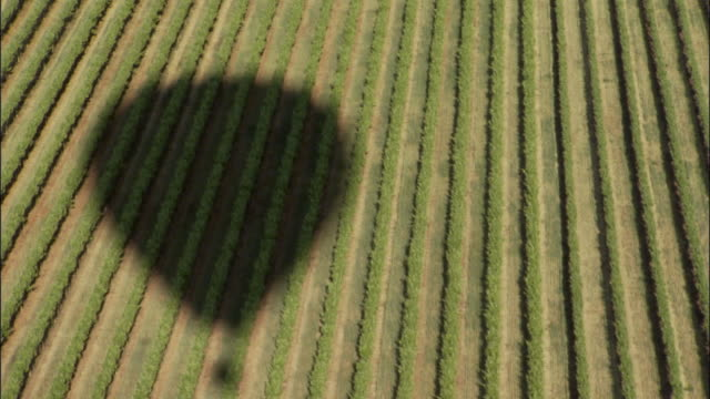 AERIAL, Shadow of hot air balloon on fields, Victoria, Australia