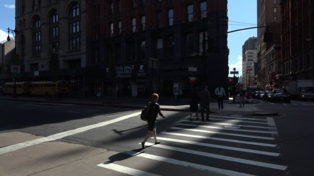 shadow of people walking crossing street in new york city - dog walker stock videos and b-roll footage