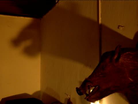Shadow of stuffed boar's head moving on wall High Range Club Munnar India