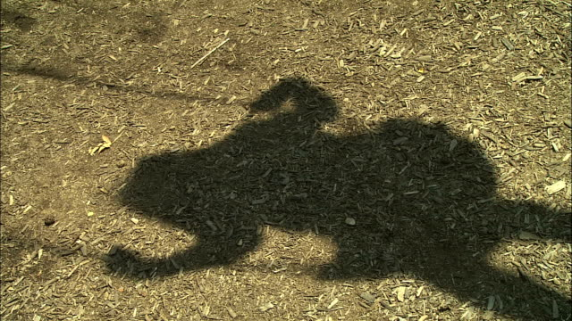 a shadow on a playground blacktop shows a child swinging in a swing. - apse stock videos & royalty-free footage