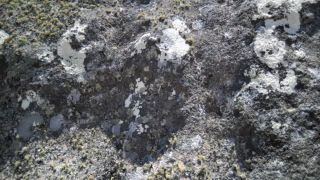 shadows creep as sun drifts over eroded rocks, andringitra, madagascar - 地衣類点の映像素材/bロール