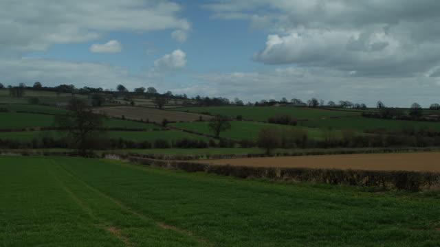 T/L shadows over Linseed rape fields, April, UK. take 1#3B07