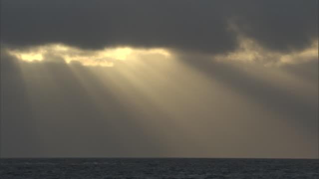 vidéos et rushes de shafts of sunlight on sea, hawaii - south pacific ocean