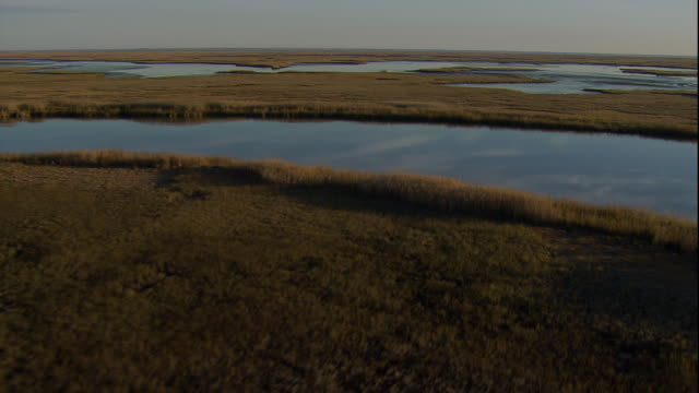 Shallow marsh water reflects the sky in a wetlands. Available in HD.