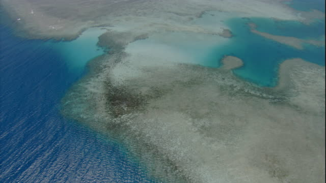 Shallow ocean water surrounds coral reefs. Available in HD.