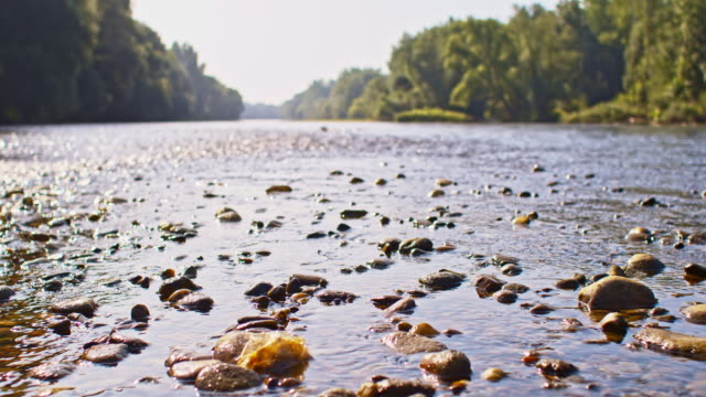 slo mo shallow river - low angle view stock videos & royalty-free footage