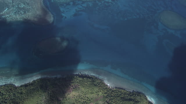 shallow sea and coral reef, dominican republic - hispaniola stock videos & royalty-free footage