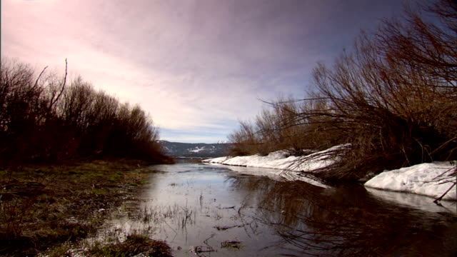 shallow still water inlet of big bear lake, snow, reeds & grass surrounding water, mountains in distant bg. marsh, winter, cold, wetland, ca. - inlet stock videos & royalty-free footage