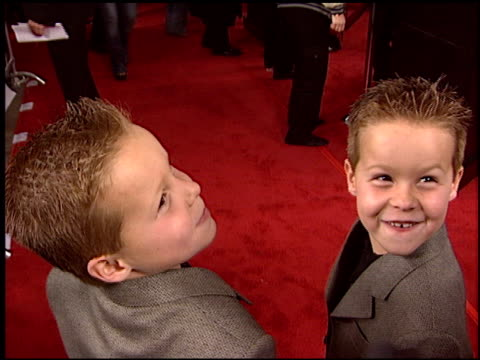 shane and brent kinsman at the 'cheaper by the dozen' premiere at grauman's chinese theatre in hollywood california on december 14 2003 - dozen stock videos & royalty-free footage