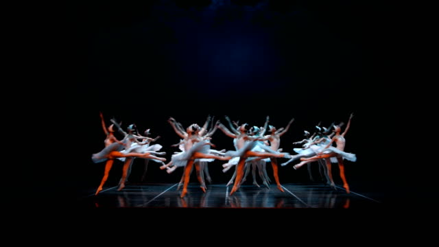 shanghai ballet 'swan' dancers perform during a media call for the shanghai ballet's production of swan lake at on april 20 2017 in melbourne... - swan lake stock videos & royalty-free footage