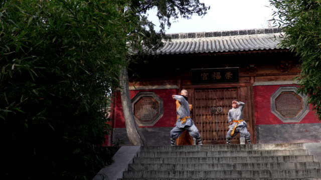 shaolin kung fu - martial arts stock videos & royalty-free footage