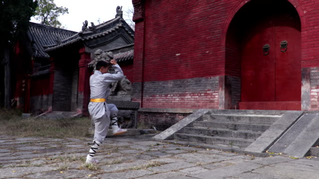 shaolin kung fu - martial arts stock videos and b-roll footage