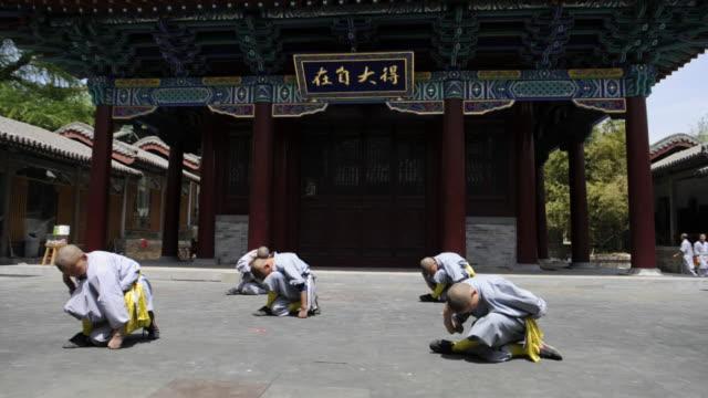 shaolin students demonstrate kung-fu movements. - カンフー点の映像素材/bロール