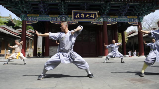shaolin students perform a series of choreographed kung-fu maneuvers. - カンフー点の映像素材/bロール
