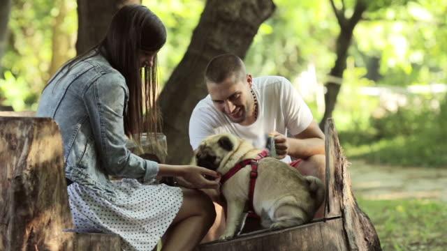 Dela en intim stund med mops-hund i parken