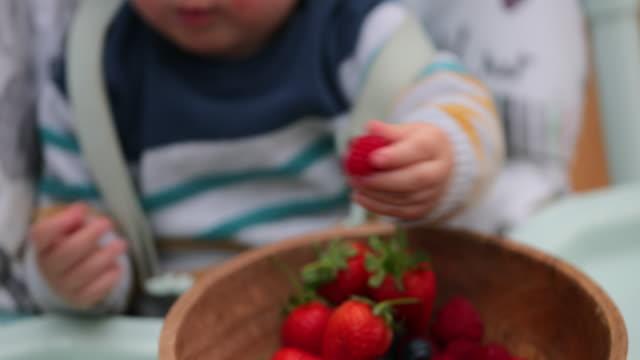 彼の果物を分かち合う - 手を伸ばす点の映像素材/bロール