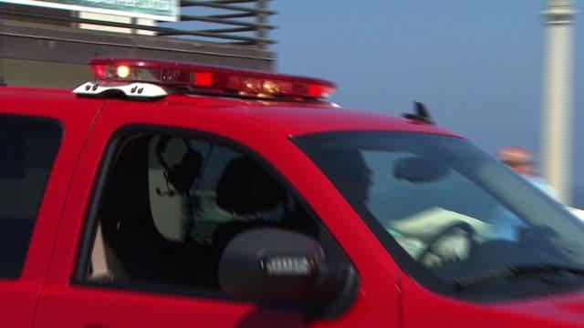 shark attack witnesses and manhattan beach scene - shark stock videos & royalty-free footage