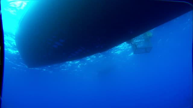a shark cage floats alongside a boat. available in hd. - 船体点の映像素材/bロール