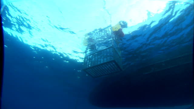 a shark cage slowly descends into the mediterranean sea. available in hd. - 船体点の映像素材/bロール