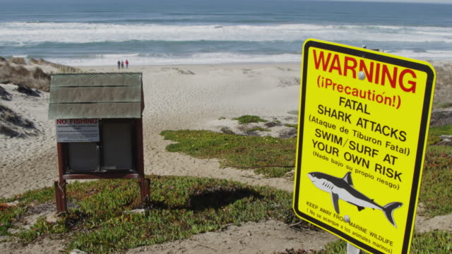 vídeos y material grabado en eventos de stock de shark warning sign on beach in california - señal de advertencia