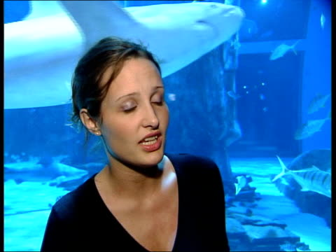 survival under threat london london aquarium liz downey interview sot will no longer have fishing trade for sharks if we carry on/ may result in... - survival stock videos and b-roll footage